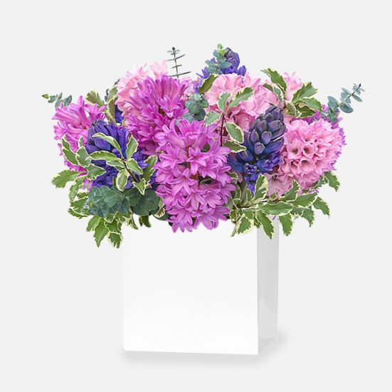 Smell Me - Hyacinths - Flowernet.gr