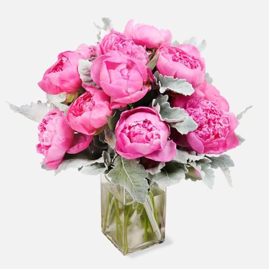Εκπληκτικές ροζ παιωνίες - Flowernet.gr