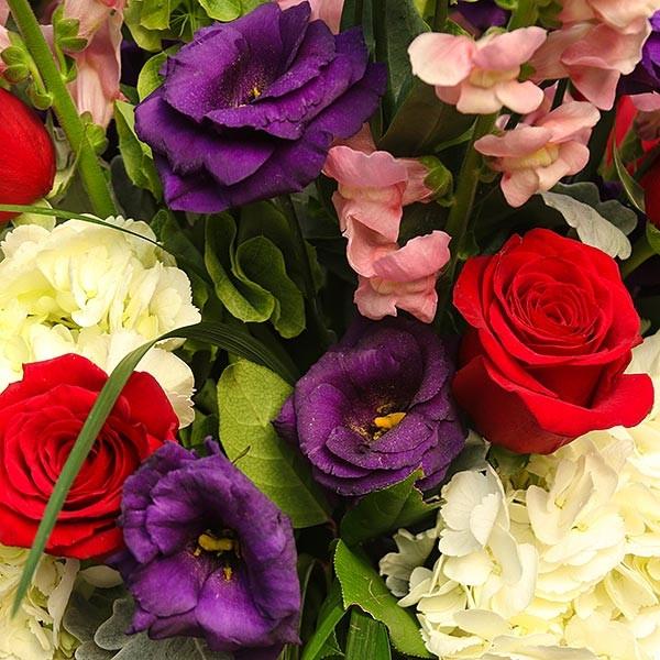 Μαγιόρκα - Τριαντάφυλλα Ορτανσίες Μολόσουλα Σκυλάκια - Flowernet.gr