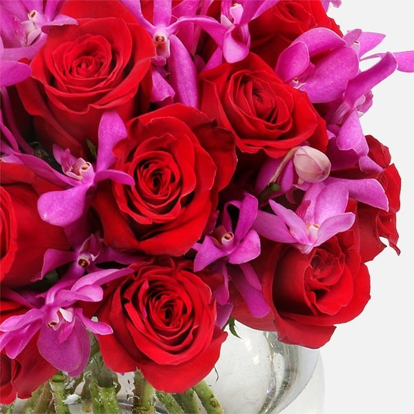 Εβίτα - Τριαντάφυλλα Ορχιδέες - Flowernet.gr