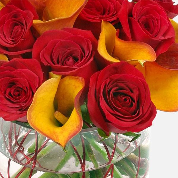 Φλόγες  - Κάλλες Τριαντάφυλλα - Flowernet.gr