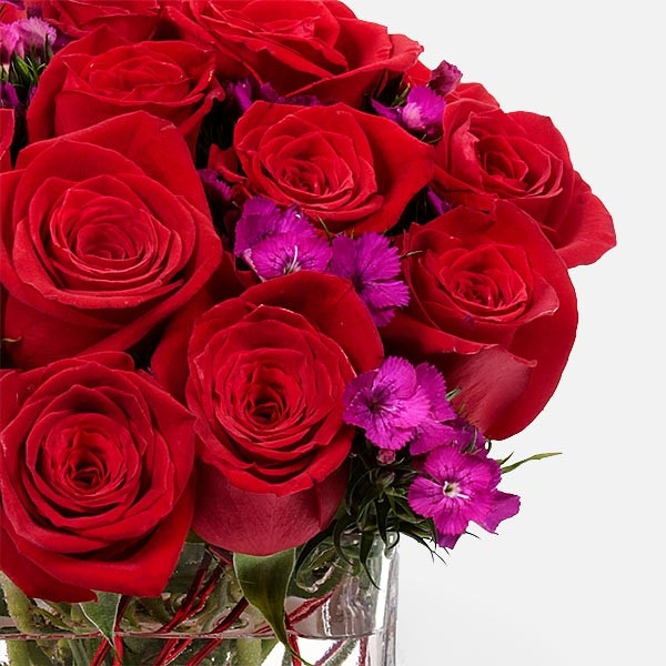 Red Velvet - Τριαντάφυλλα - Flowernet.gr