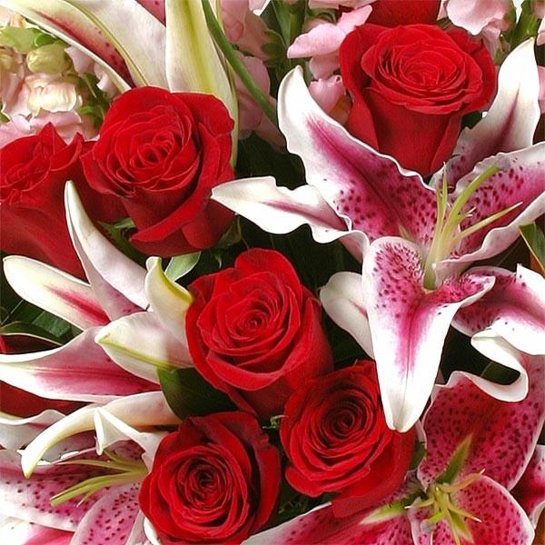 Κοντσέρτο Λουλουδιών - Τριαντάφυλλα Λίλιουμ - Flowernet.gr