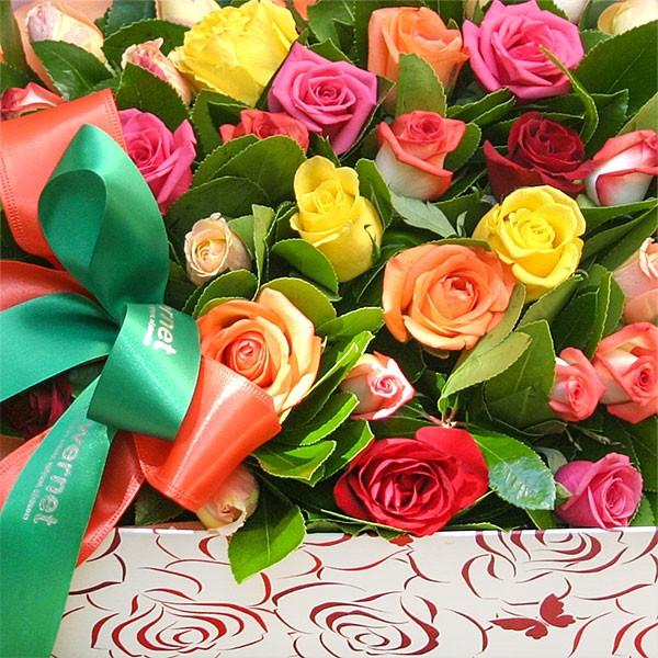 Κουτί με 35 Τριαντάφυλλα - Flowernet.gr