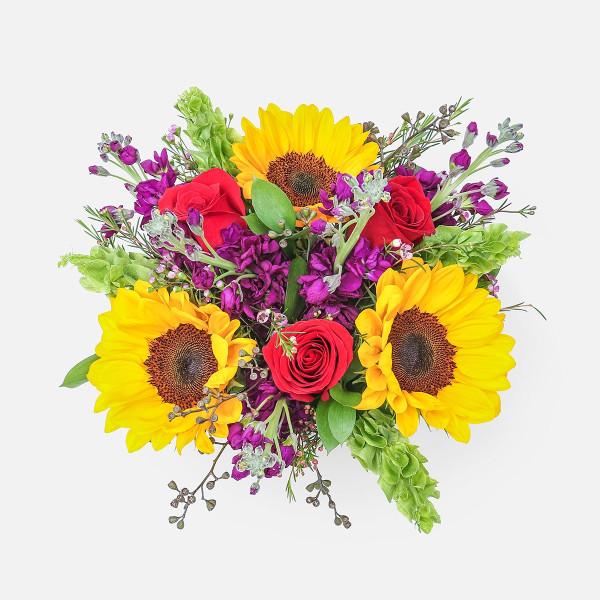 Κάρπαθος - Τριαντάφυλλα Σκυλάκια Ηλίανθοι Μολουσέλα - Flowernet.gr
