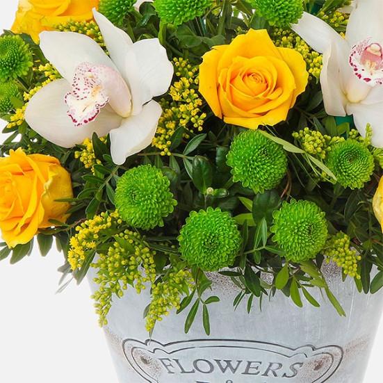 Flowers & Garden - Flowernet.gr