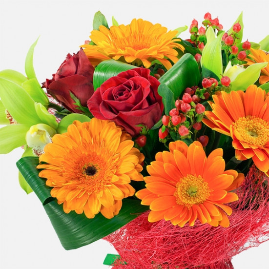 Ρωξάνη - Flowernet.gr